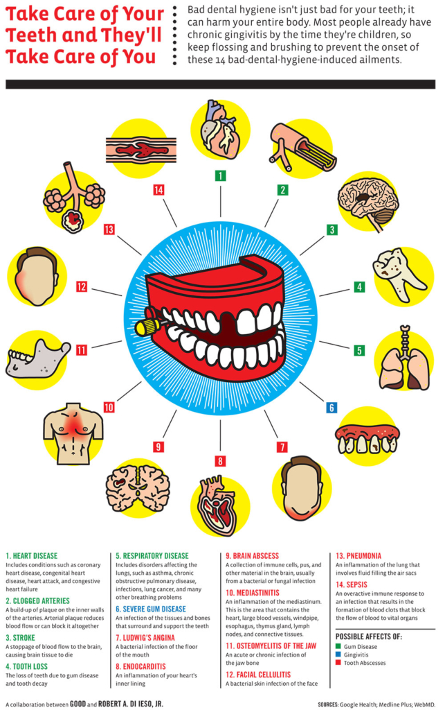 Teeth and Your Body's Health Infographic